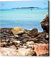 The View From Shore Acrylic Print