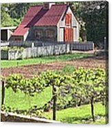 The Vineyard Barn Acrylic Print