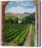 The Vineyard Acrylic Print