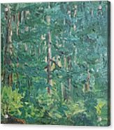 The Vosges Forest Acrylic Print