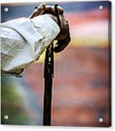 The Walking Stick Acrylic Print