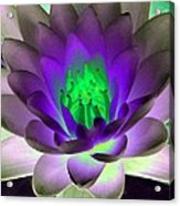 The Water Lilies Collection - Photopower 1115 Acrylic Print