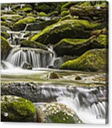 The Water Will Acrylic Print by Jon Glaser
