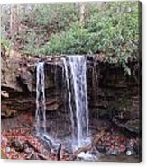 The Waterfall Acrylic Print by Diane Mitchell