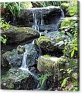 The Waters Shall Spring Forth From The Ground Acrylic Print