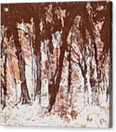 The Way Through The Woods 2 Acrylic Print