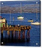 The Wharf Acrylic Print by Tom Kelly