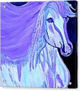 The White And Purple Horse 1 Acrylic Print