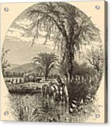 The White Mountains From The Conway Meadows 1872 Engraving Acrylic Print