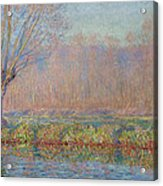 The Willow Acrylic Print