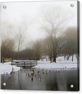 The Willows In Winter - Newtown Square Pa Acrylic Print
