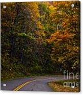 The Winding Road Acrylic Print
