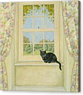 The Window Cat Acrylic Print