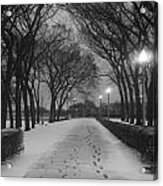 The Winter Cathedral Acrylic Print