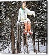 The Winter Greeter Acrylic Print