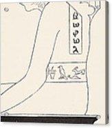 The Wise Baviaan The Dog-headed Baboon Acrylic Print by Joseph Rudyard Kipling