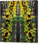 The Wishbone Tree Acrylic Print
