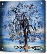 The Wishing Tree Acrylic Print