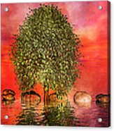 The Wishing Tree One Of Two Acrylic Print by Betsy Knapp