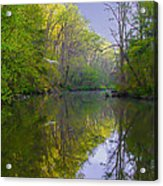 The Wissahickon Creek In The Morning Acrylic Print