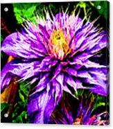 The Witch Queen Of New Orleans  Acrylic Print