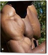 The Wonder Of Biceps Acrylic Print