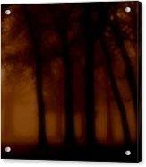 The Woodlands Acrylic Print