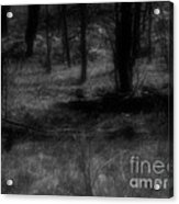 The Woods Are Lovely Dark And Deep Acrylic Print