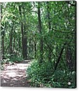 Stopping By Woods Acrylic Print