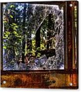 The Woods Through A School Bus Window Acrylic Print