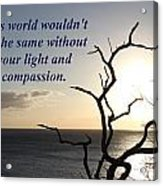 The World Wouldn't Be The Same Acrylic Print