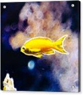 The Yellow Submarine Acrylic Print