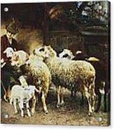 The Young Shepherd Acrylic Print