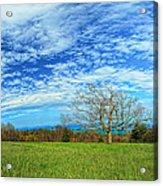 The Zen Meadow Acrylic Print