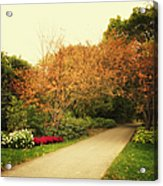 Then Autumn Arrives 05 Acrylic Print