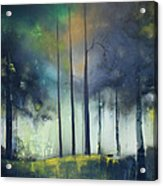 There Is Light At The End Of The Woods Acrylic Print