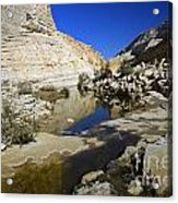 There Is Water In The Desert 02 Acrylic Print