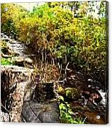 There Once Was A Garden That Lived In A Shoe Acrylic Print