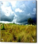 There's A Storm Brewing!!! #golf Acrylic Print