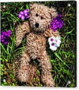 These Are For You - Cute Teddy Bear Art By William Patrick And Sharon Cummings Acrylic Print