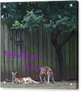 They Will Never Think It Was Us.. Acrylic Print