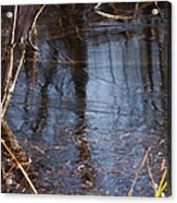 Thin Ice Of A New Day Acrylic Print