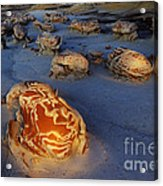 The Egg Factory  Bisti/de-na-zin Wilderness At Night Acrylic Print