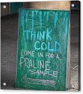 Think Cold Acrylic Print by Brenda Bryant