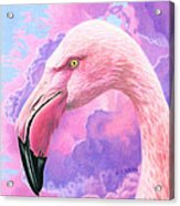 Think Pink Flamingo Acrylic Print