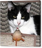 This Is My Mouse Acrylic Print