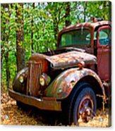 This Ol' White Can't Stay In Sight 10-4 Acrylic Print