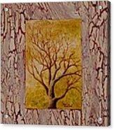This Old Tree Acrylic Print