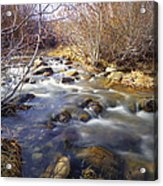 Thomas Creek Acrylic Print