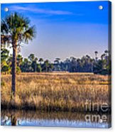 Those Quiet Sounds Acrylic Print by Marvin Spates